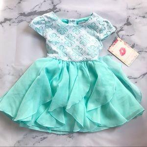 Sweet Heart Rose Toddler Mint Green Dress NWT